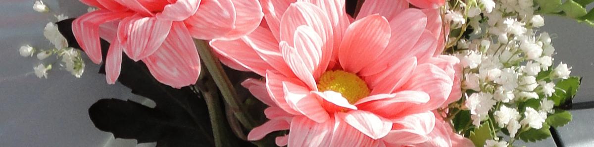 Coche Nupcial - Floristeia Lucy