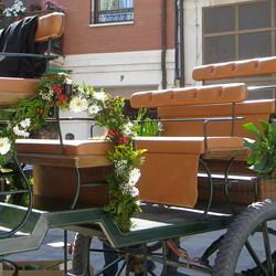 Decoración del Lugar - Floristeria Lucy